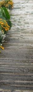 escalier d eau